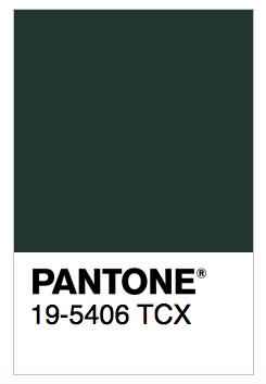 Pantone verde botella irati anda solay for Verde pantone 2017