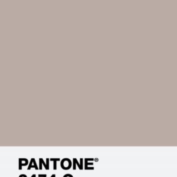 PANTONE BEIGE